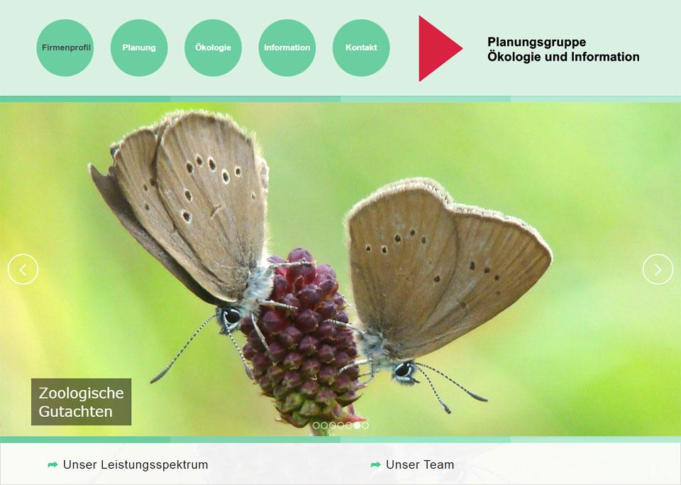 Homepage-Erstellung für Planungsgruppe Ökologie und Information, 72669 Unterensingen